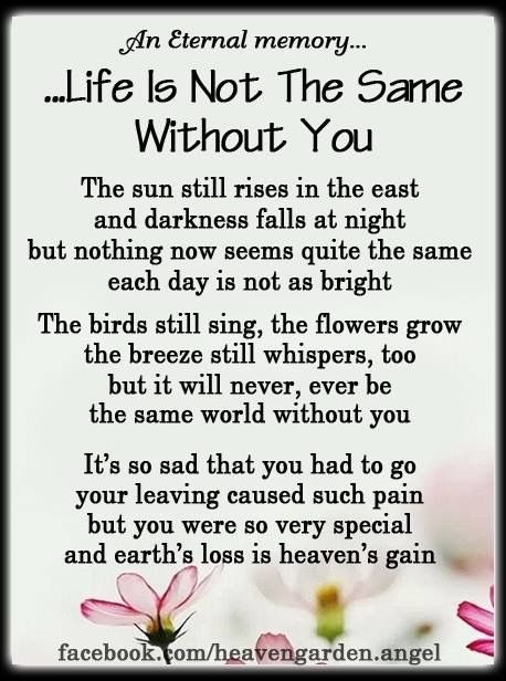 Life is not the same without you | Forever in My Heart