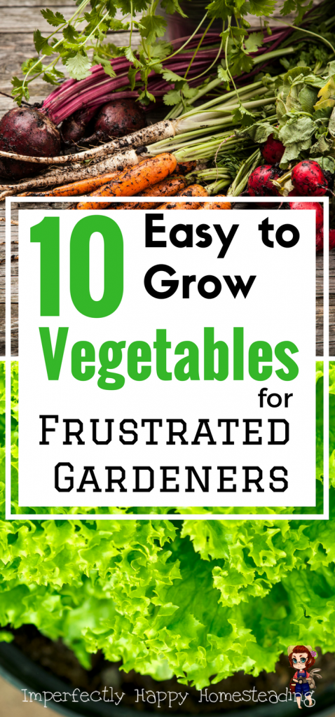 10 Easy To Grow Vegetables For The Frustrated Gardener