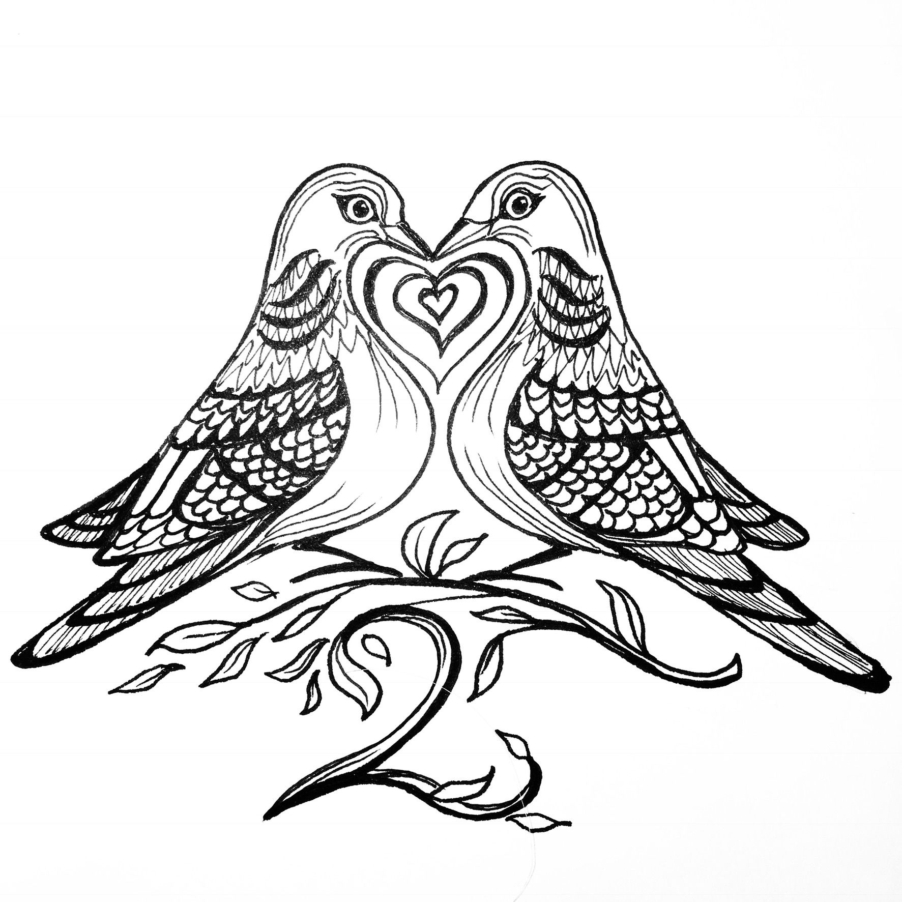 Two Turtle Doves Penandink Drawing Doodle Blackandwhite