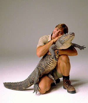 steve irwin zoosteve irwin death, steve irwin south park, steve irwin zoo, steve irwin смерть, steve irwin son, steve irwin ship, steve irwin zoo australia, steve irwin funeral, steve irwin show, steve irwin family, steve irwin wife, steve irwin video, steve irwin accident, steve irwin pronunciation, steve irwin photo, steve irwin morte, steve irwin youtube, steve irwin simpsons, steve irwin day, steve irwin moarte