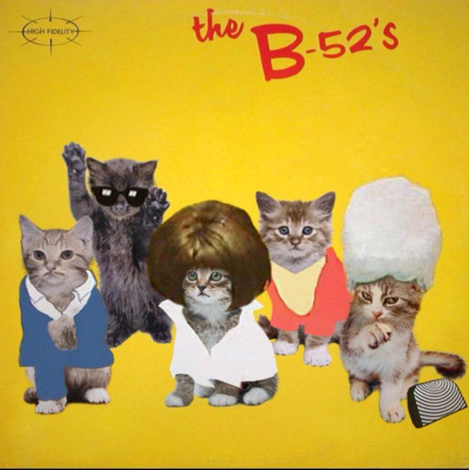 Pin By Harry Pygar On Animals Cats Cat Lovers Kitten