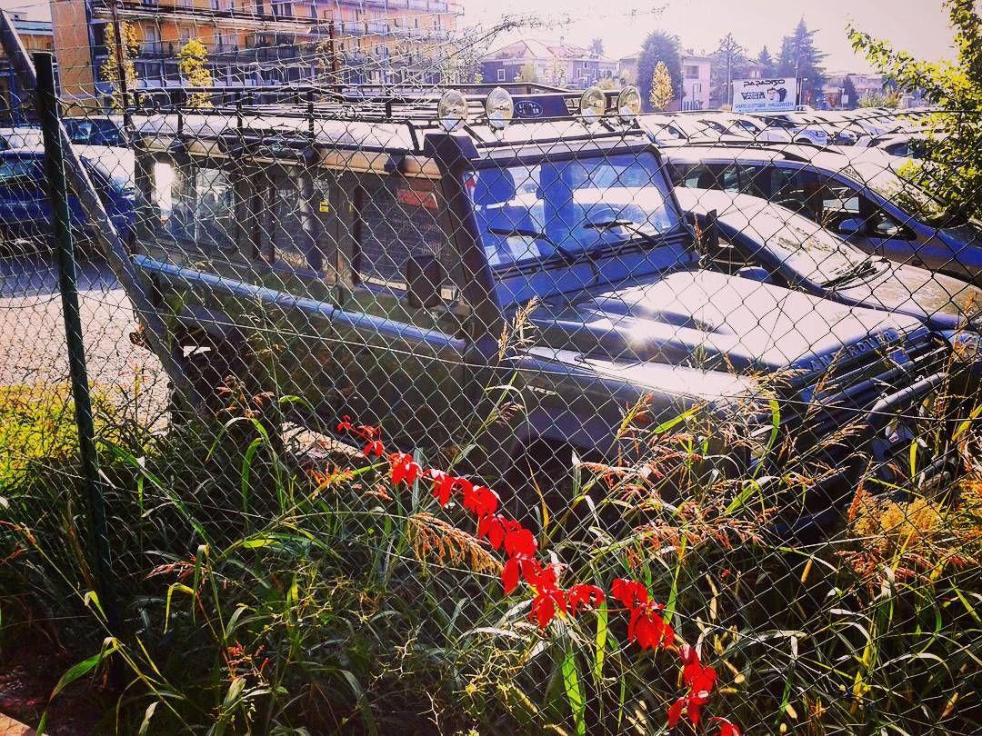 #landrover#defender#landroverdefender#raid#rally#savana#desert#desertlife#madeinengland#britishstyle by ciancol415 #landrover#defender#landroverdefender#raid#rally#savana#desert#desertlife#madeinengland#britishstyle