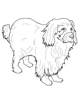 Newfoundland Dog Coloring Page Horse Coloring Pages Coloring Pages
