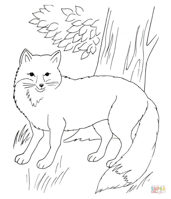 Image Realistic Red Fox Coloring Page Free Printable Coloring Pages Fox Coloring Page Animal Coloring Pages Unicorn Coloring Pages