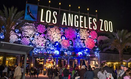 One Year Individual Plus Family Or Family Deluxe Membership At Los Angeles Zoo Up To 15 Off Zoo Lights Los Angeles Zoo Los Angeles
