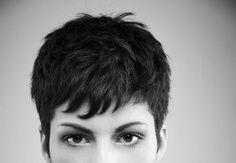corto pelo