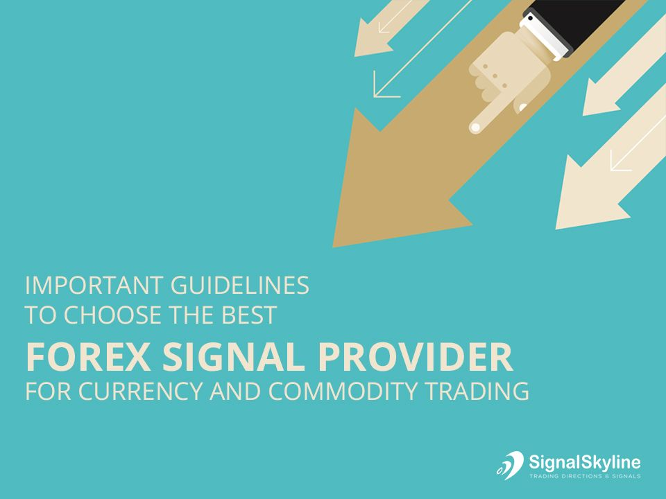 Essential Guidelines To Choose The Best Forex Signal Provider