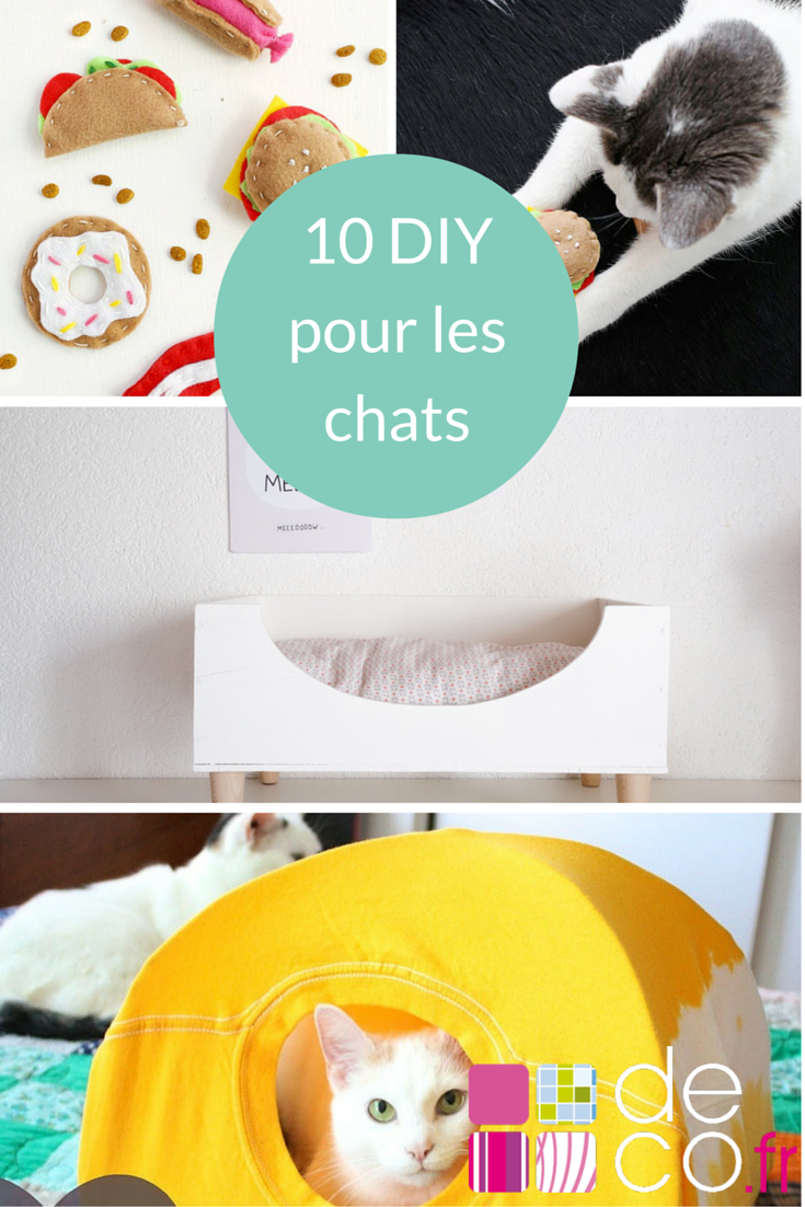 Tuto Niche Pour Chat 10 diy pour les chats | diy, dog furniture, pet birds