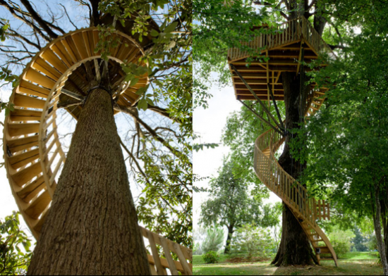 Superior A Convenient Way To Climb Up To A Tree House.