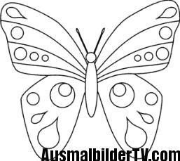 Schmetterling Malvorlage Malvorlage Schmetterling Malvorlagen Schmetterling