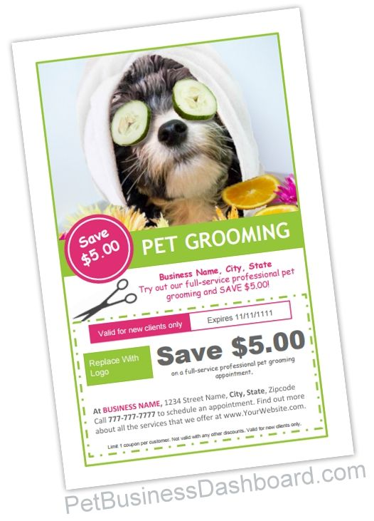 Grooming Coupon / Flyer Template - Pet Business Dashboard