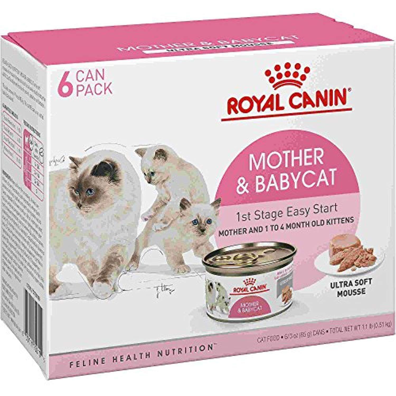Royal Canin Feline Health Nutrition Babycat Instinctive Mousse Wet Cat Food Multipack 3 Oz Case Of 6 You Can Find Ou Wet Cat Food Cat Food Feline Health
