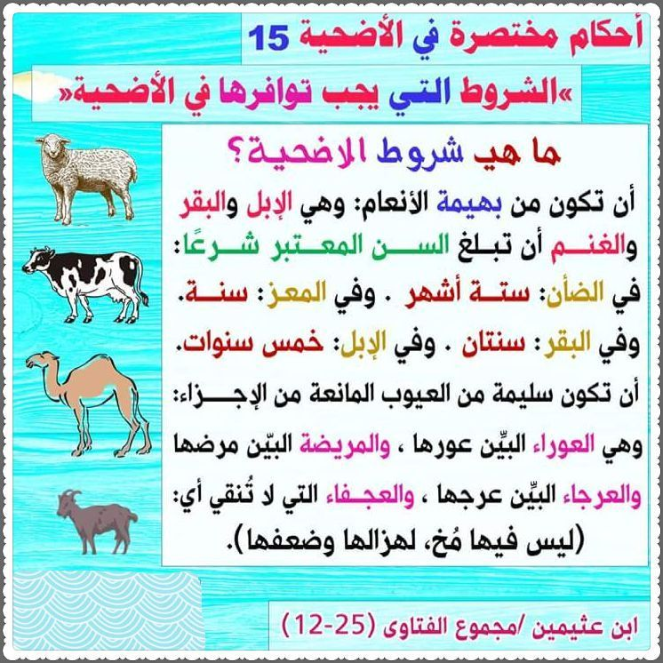 Pin By الأثر الجميل On فتاوى Words Word Search Puzzle Word Search