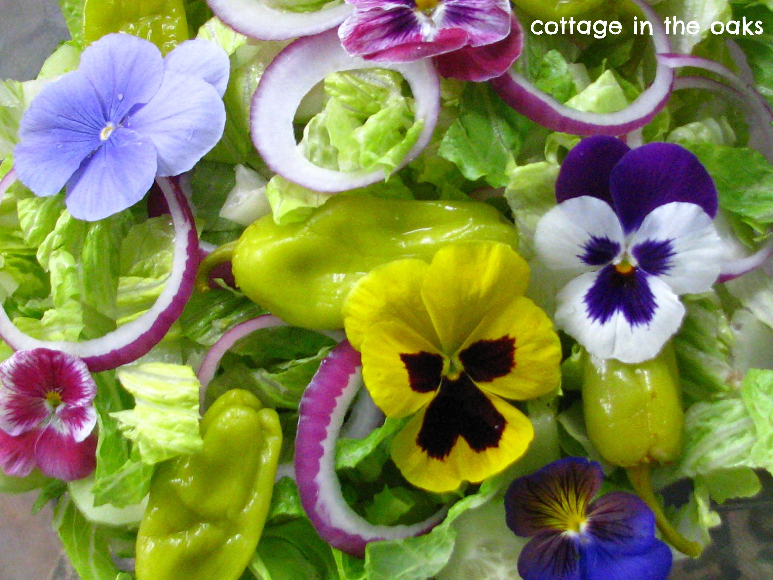 Pansies In Salad Edible Flowers Edible Flowers Eatable Flowers Beautiful Salad