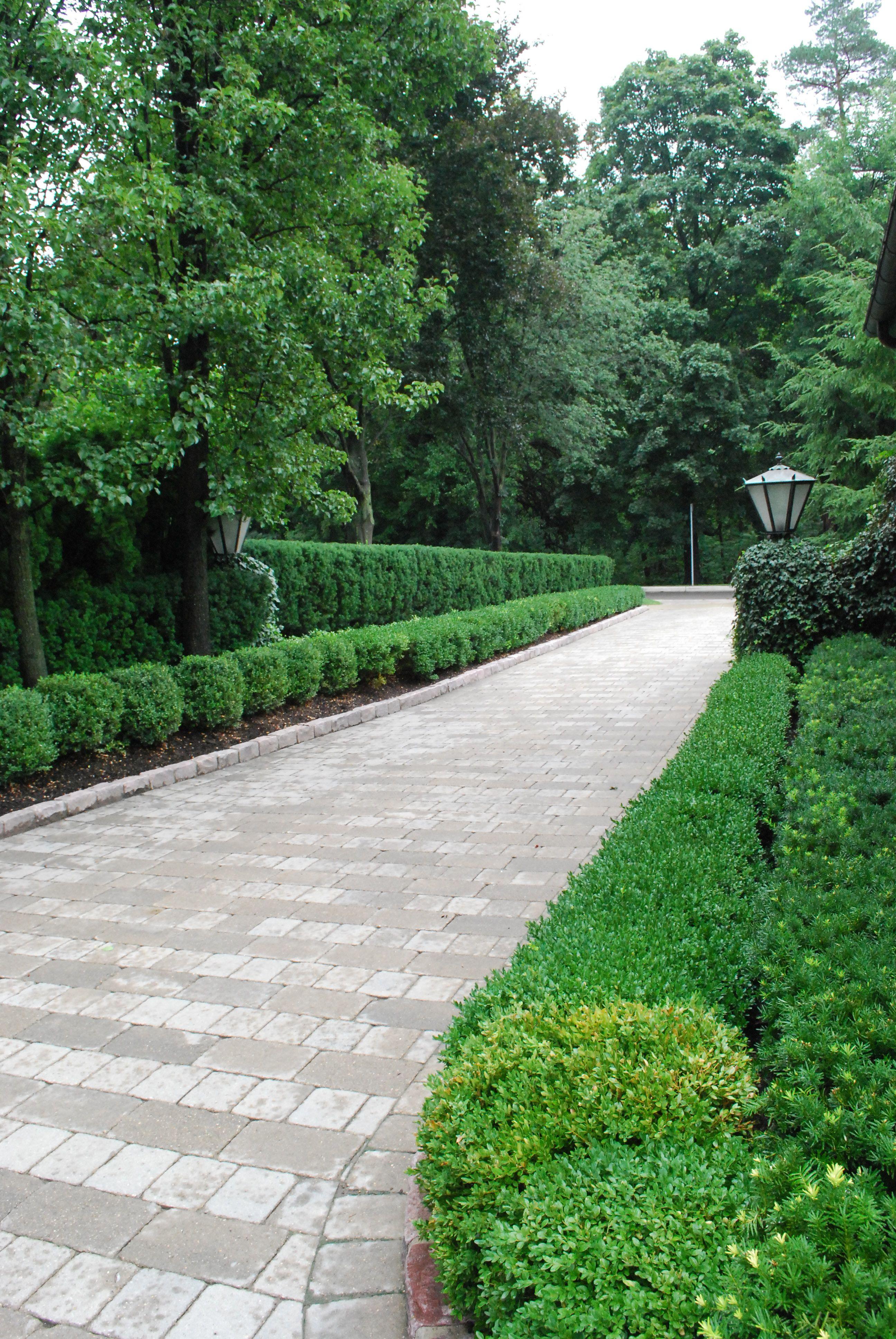 Modern Landscaping, Driveway