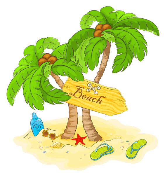 Transparent Beach Palm Decor PNG Clipart Картинки, Пляж