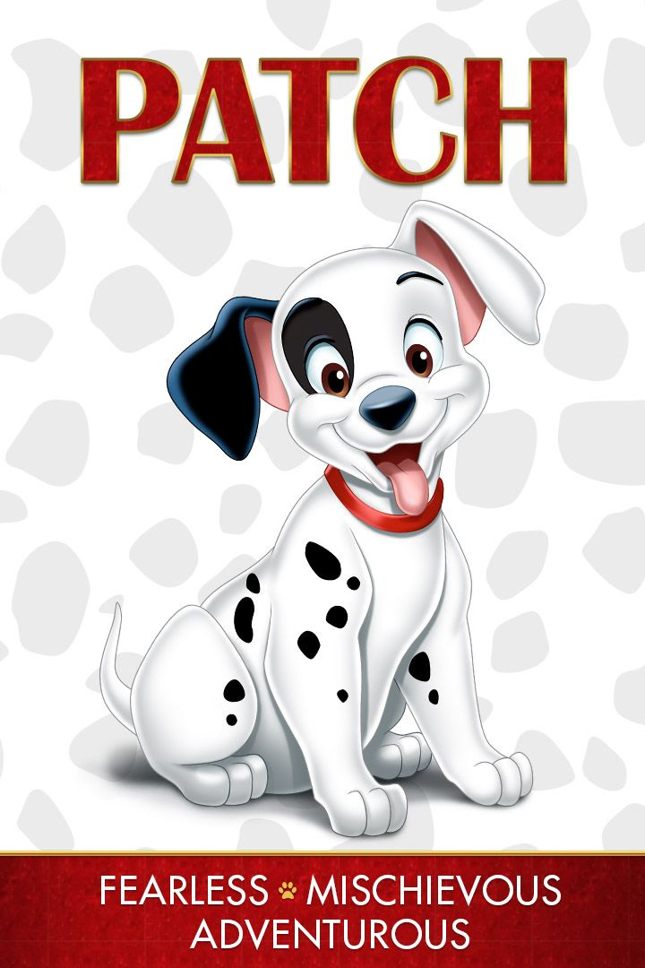 Meet Patch Patch Is The Most Mischievous Of The Puppies He Is