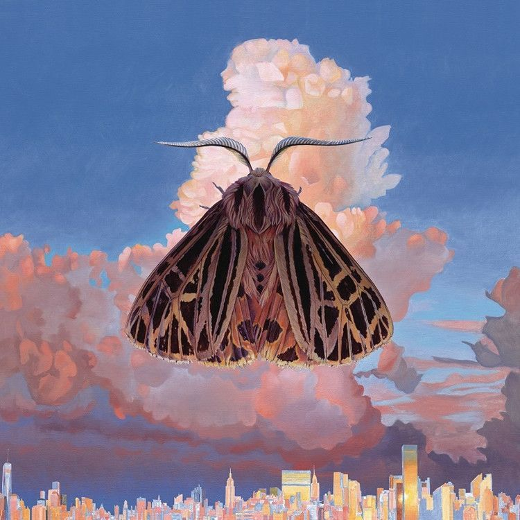 Chairlift - Moth on Vinyl LP + Download