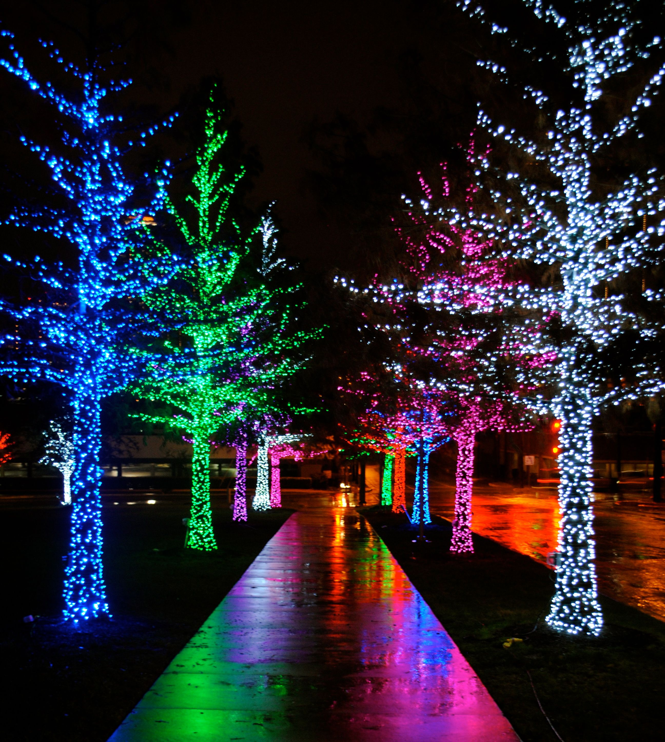 Christmas Light Installation In Eden Prairie Mn