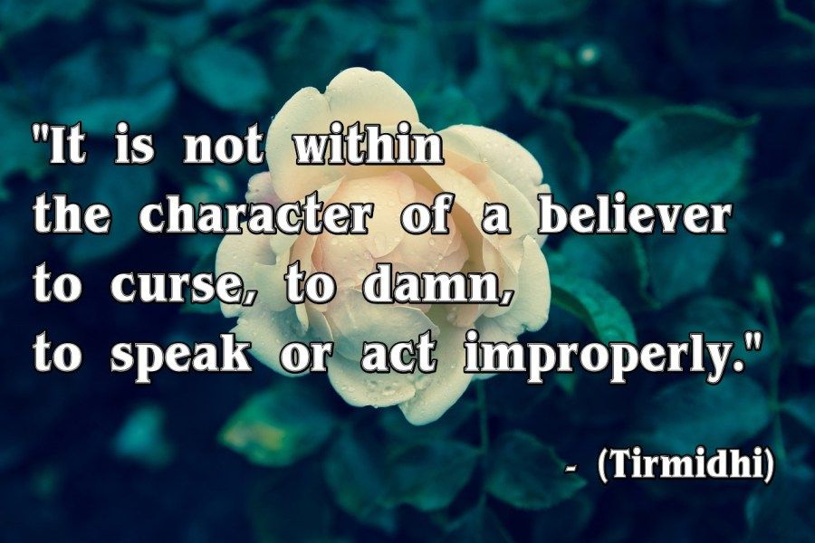 """""""It is not within the character of a believer to curse, to damn, to speak or act improperly.""""  – (Tirmidhi)"""