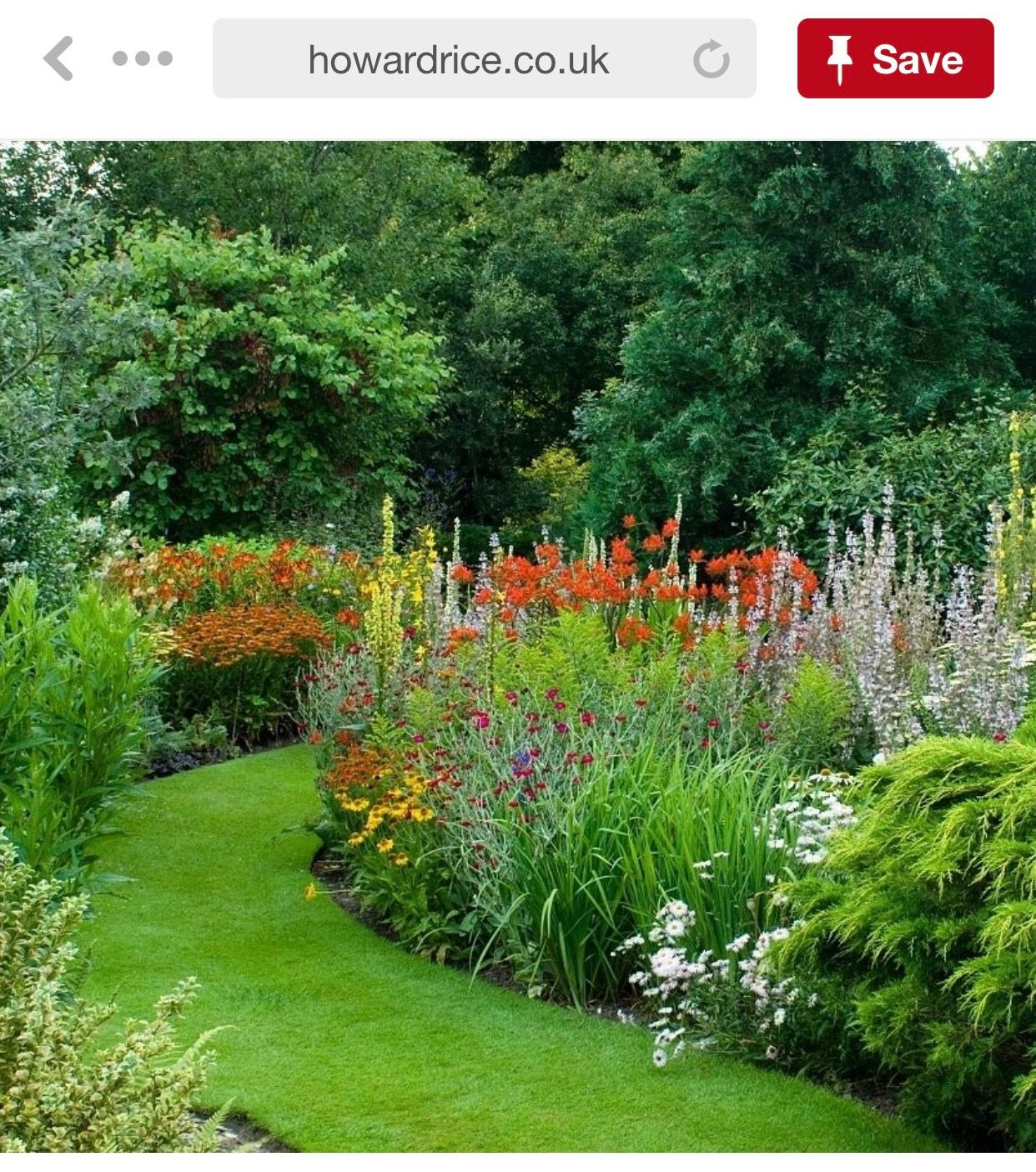 Pin By The Foth Family On Gardening Plants Plants