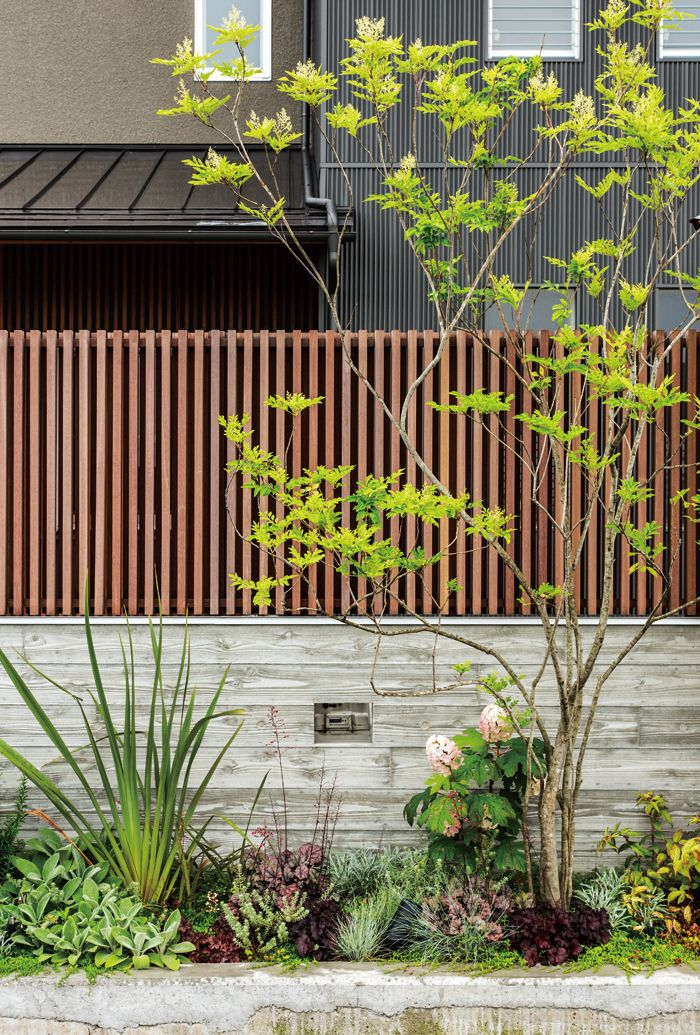 家 おしゃれまとめの人気アイデア Pinterest ここ 庭 玄関 植木