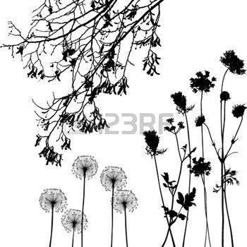Arbustos Dibujo Imagenes De Archivo Vectores Arbustos Dibujo Fotos Libres De Derechos Arbustos Arbusto Dibujo Dibujo De Diente De Leon
