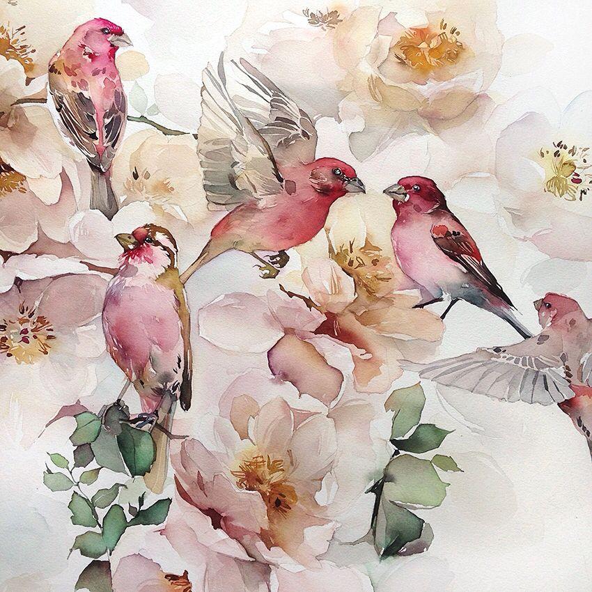 акварель птицы цветы картинки один