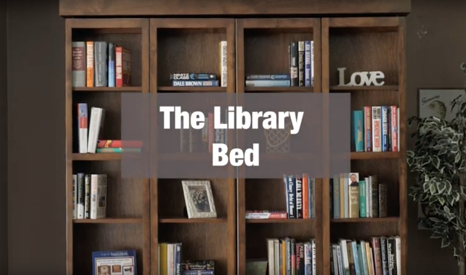 Library Wallbed In 2020 With Images Bed Wall Murphy Bed