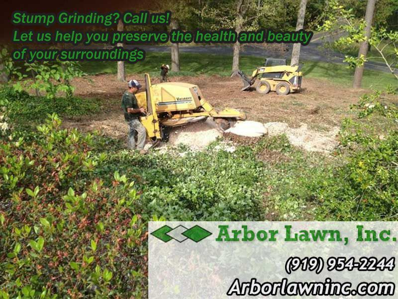 Stump grinding Tree service, Health and beauty, Arbor
