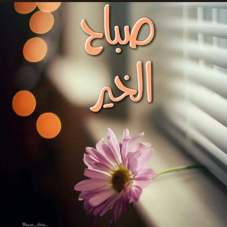 الوسم صباح الخير على تويتر Beautiful Morning Messages Good Morning Arabic Good Morning Sister