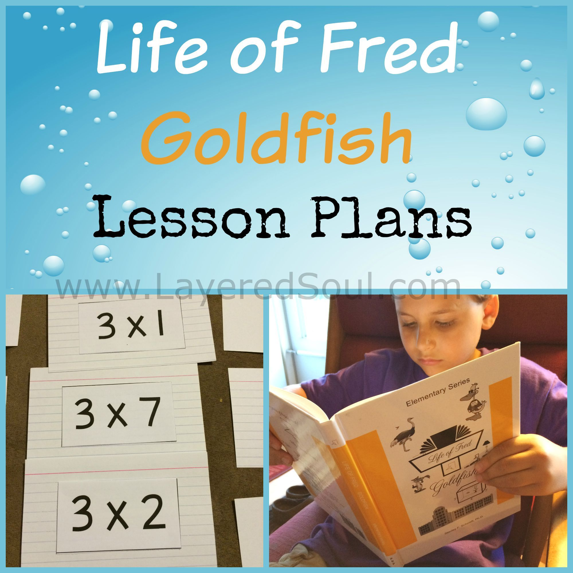 Life Of Fred Goldfish Lesson Plans