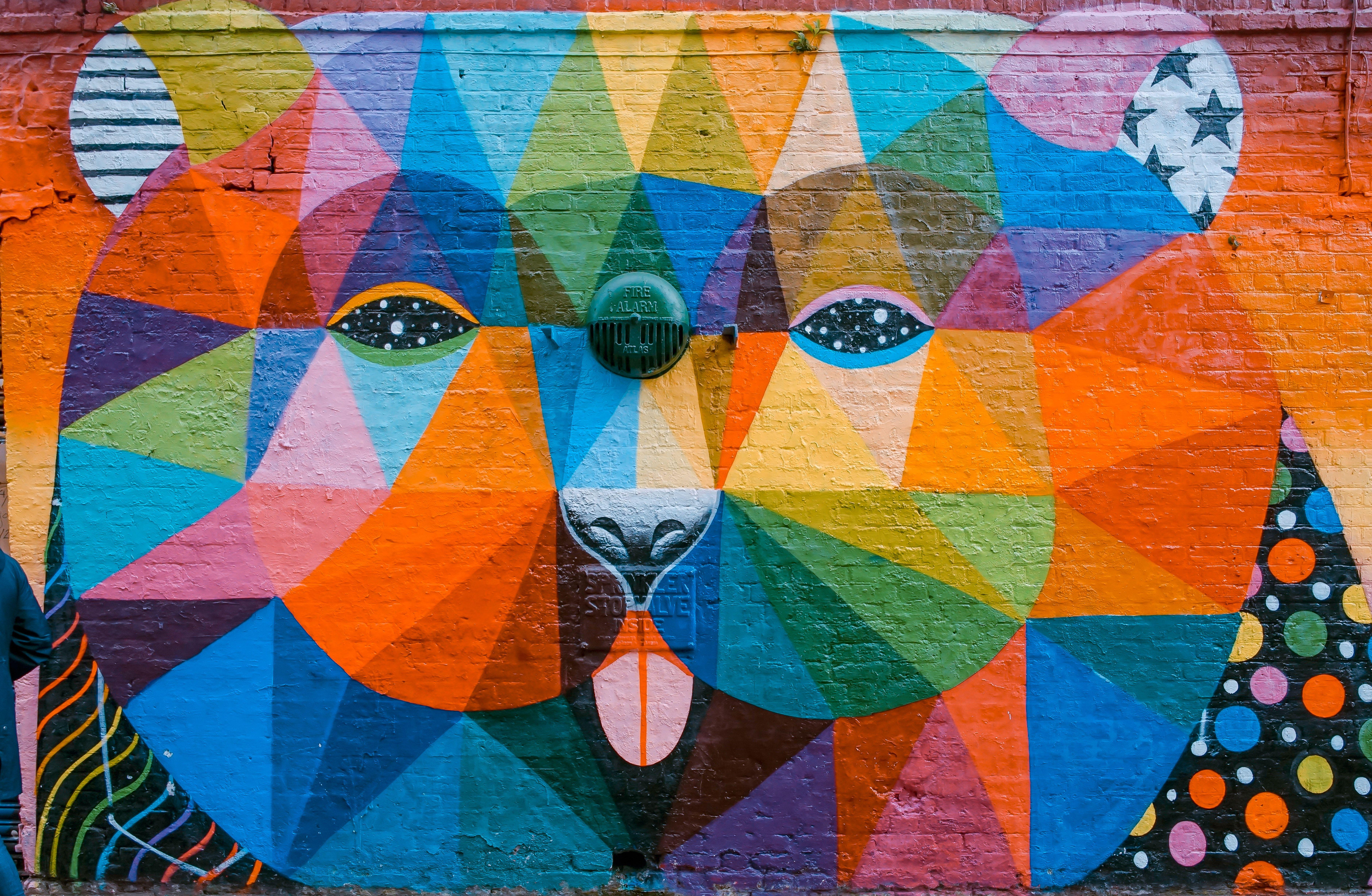 """Oso"" by Okuda San Miguel Mural Bear photo by Toa Heftiba"