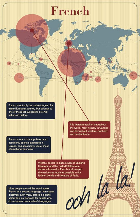 Infographic Of French Infographics Learning French And Language - Top international languages in the world