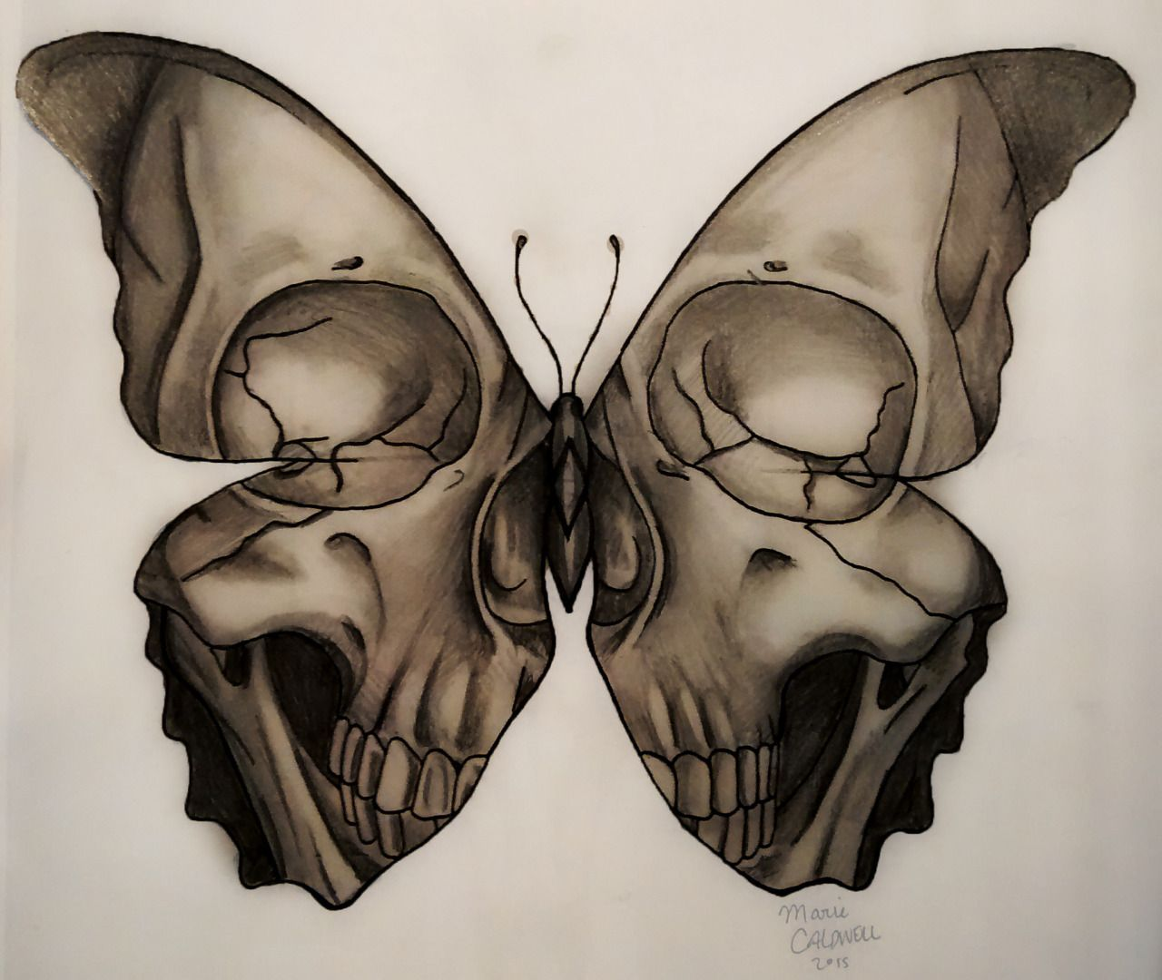 medusa illustration u201cskull butterfly tattoo design marie caldwell rh pinterest com Skull and Cross Tattoo Designs Skull and Cross Tattoo Designs