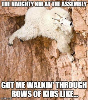 Teacher Funnies 14 Teacher Memes Funny Teacher Humor Teacher Memes