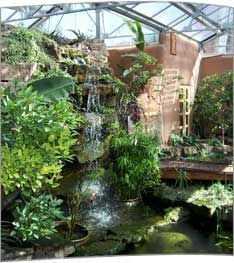 Image Result For Aquaponics Greenhouse