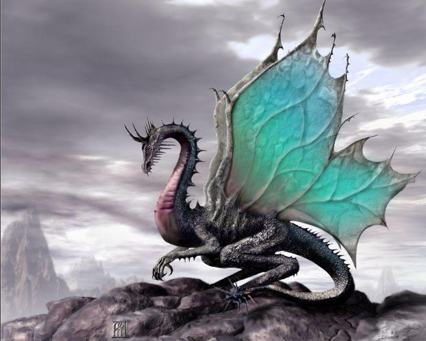 dragon-gris