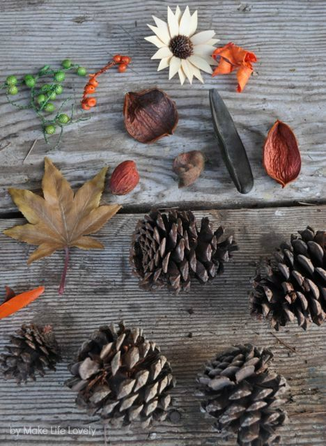 Photo of DIY Cinnamon Scented Fall Nature Wreath – Make Life Lovely