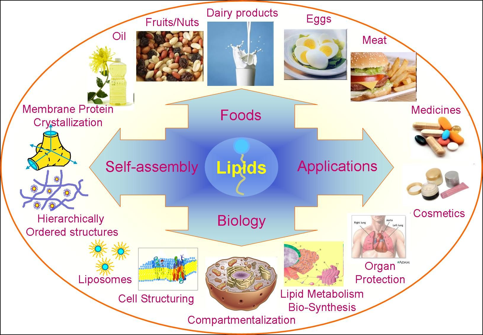 Lipids are often defined as waterinsoluble (or sparingly