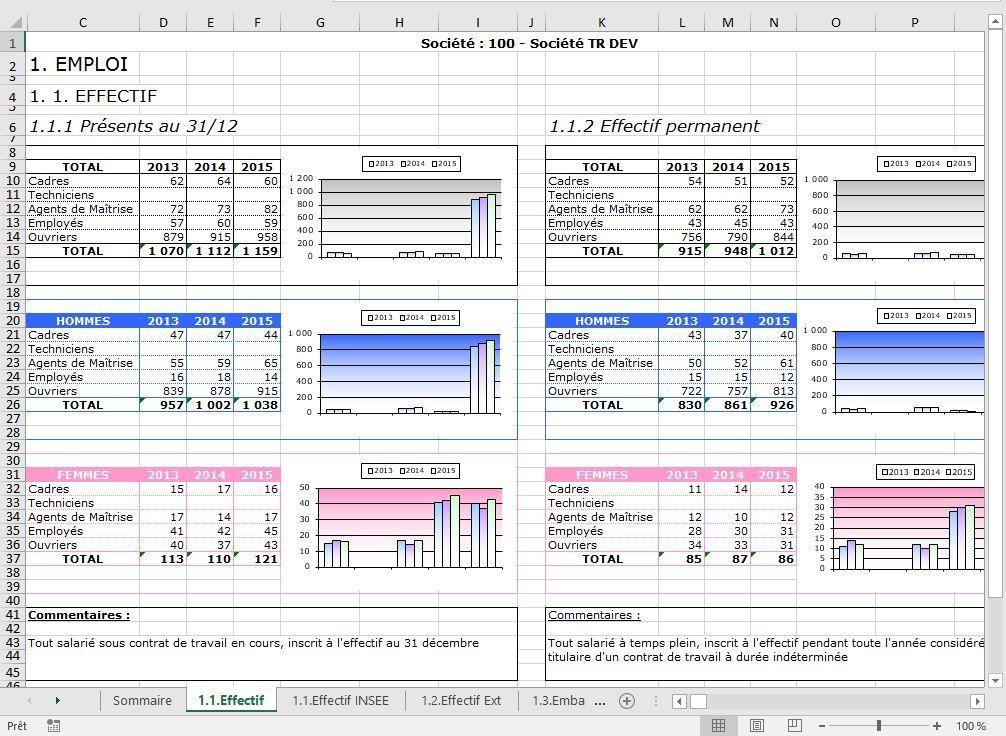 Tableaux De Bord Rh Definition Avantages Modele Indicateurs Sirh Et Logiciels Tableau De Bord Rh Tableau De Bord Bilan Social