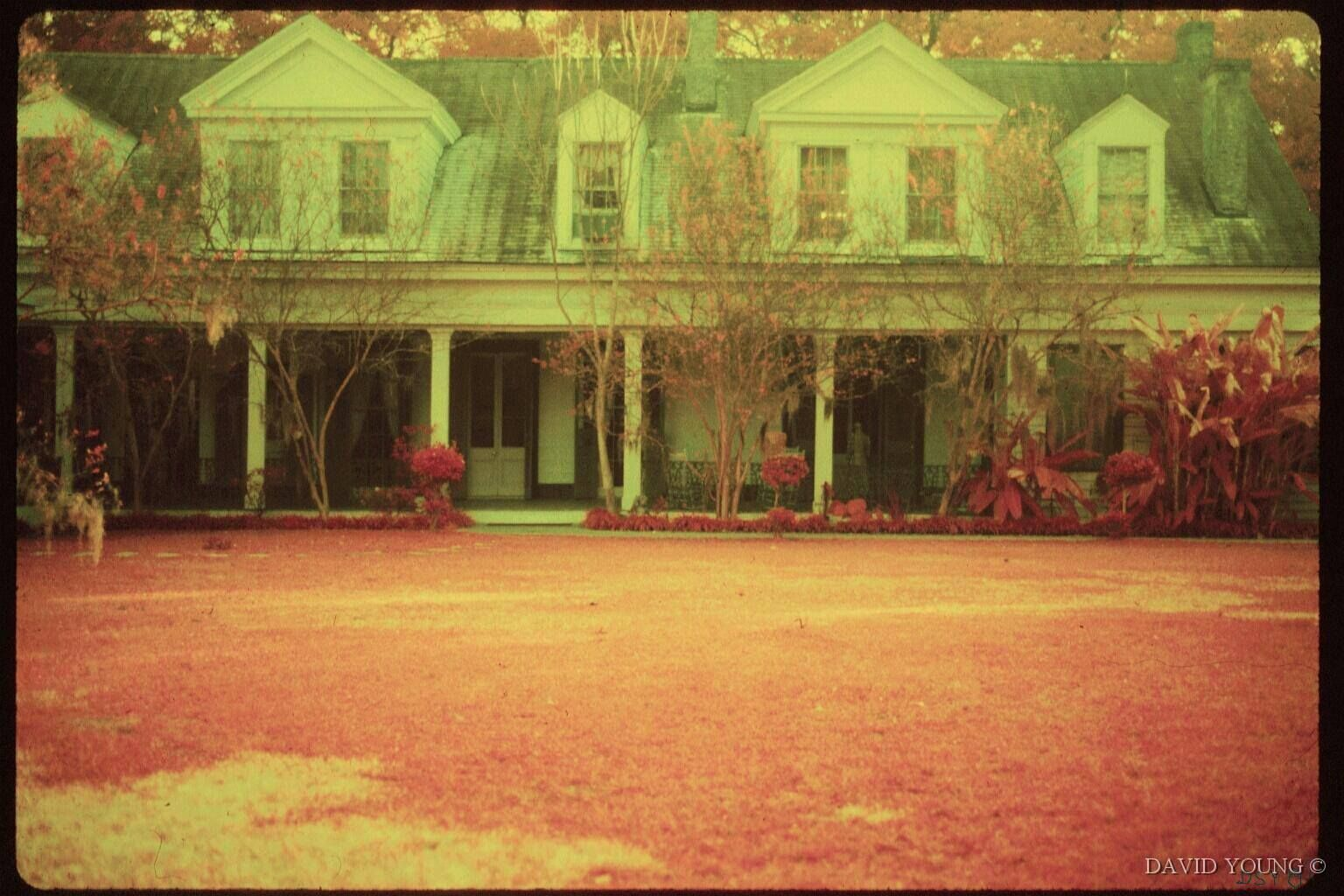 Photo taken at the Myrtles by Dave Young in the 1980s