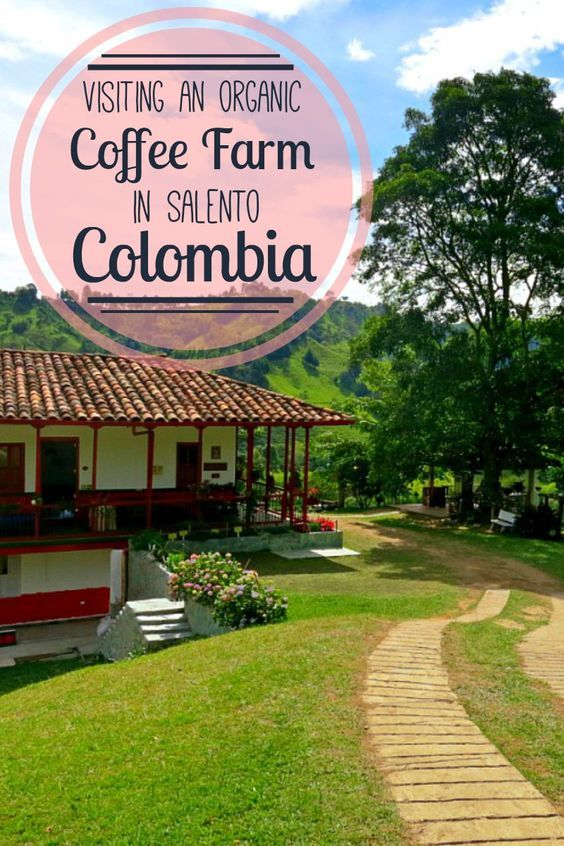 We visited an organic coffee farm in Salento, Colombia, in