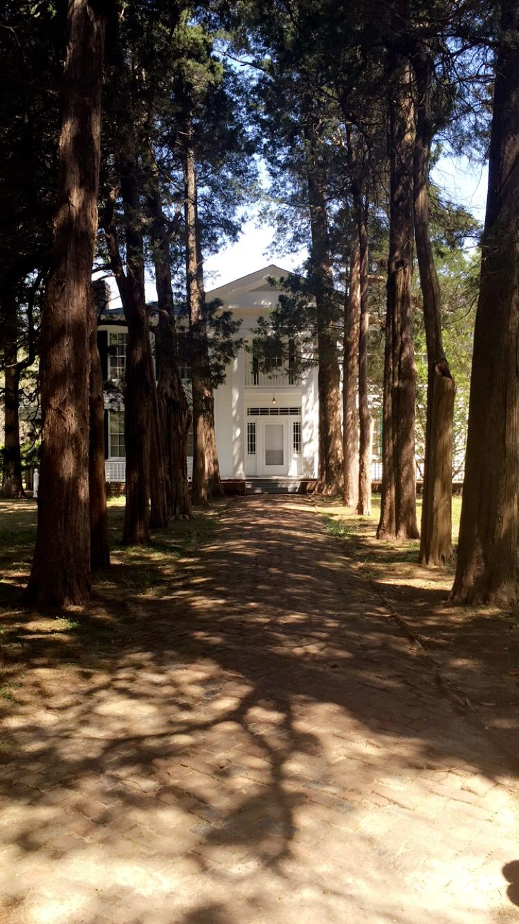 Rowan Oak, Oxford MS