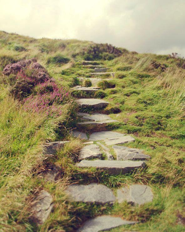 25 beautiful irish landscape ideas on pinterest ireland for Garden design ideas northern ireland