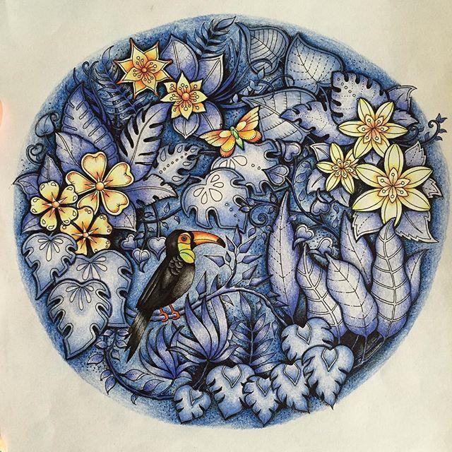 Dusk in the jungle! #magicaljungle #johannabasford #coloring #adultcoloringbook #polychromos #triplusfineliner #mycreativeescape