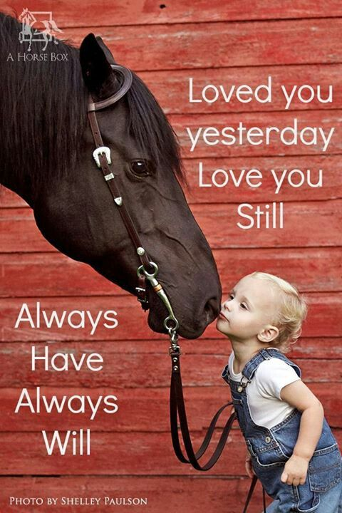 Happy Valentine S Day Loved You Yesterday Love You Still Always Have Always Will Horses Horses Horse Quotes Inspirational Horse Quotes