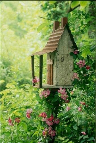 Climbing flowers up birdhouse post