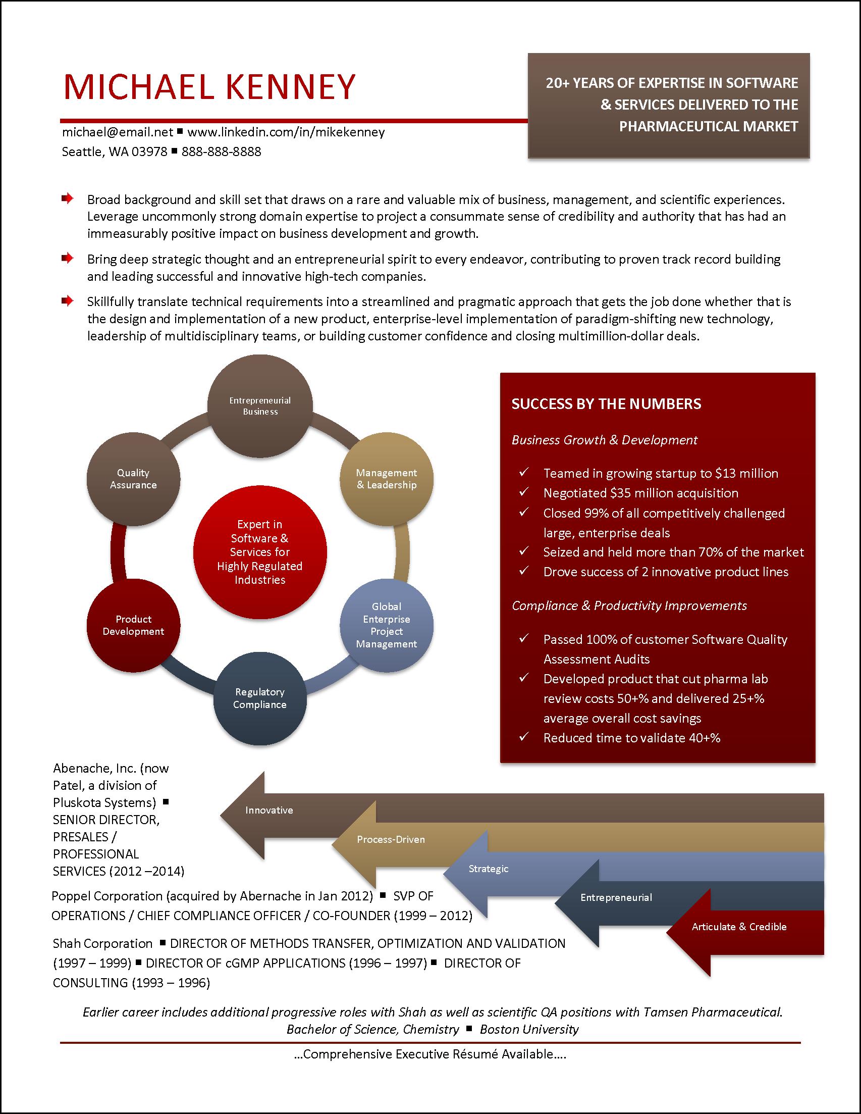infographic resume example for pharmaceutical market resume