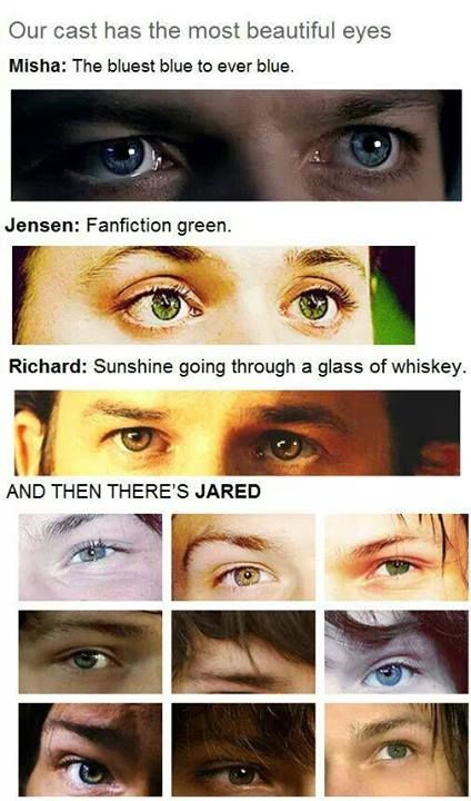 I know. My God. Their eyes! And Jared's are just... (Plus, I love how there's just a picture of Jared's eyebrow in the middle... :3)
